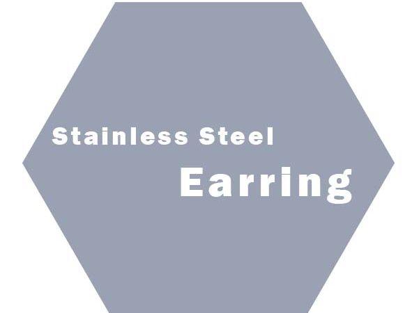 S.Steel Earring